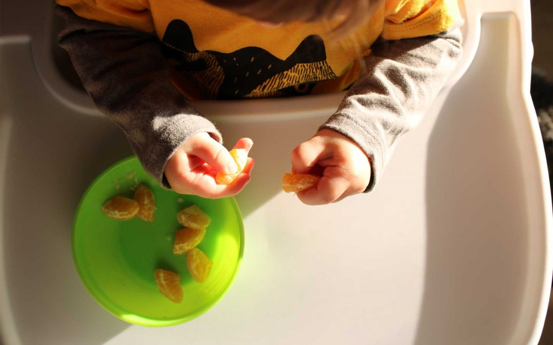 Healthy Eating With Toddlers